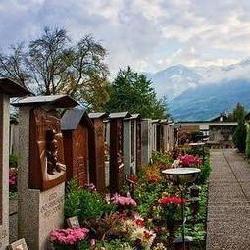 宠物殡葬业起步 职业宠物送葬人月入过万