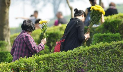 涨知识 | 世界各国绿色生态殡葬大全