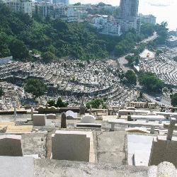 购墓的一般性流程
