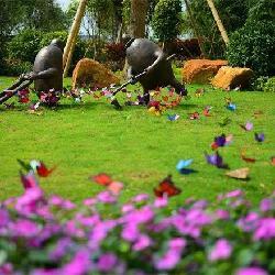 为什么说草坪葬是让生命回归自然的最好方式?