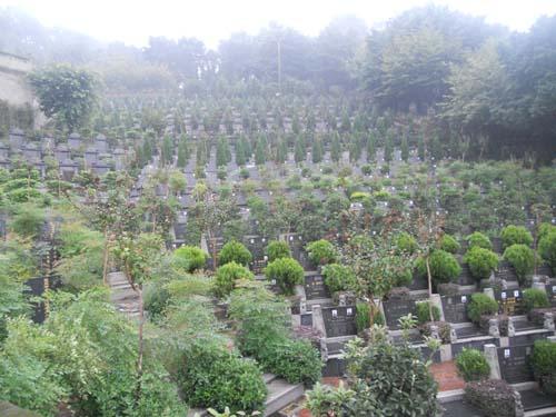 陵园中通过风水学知识选墓