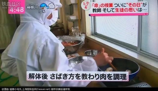 日本一高中奇特课程:让学生杀死并吃掉自己养大的小鸡……